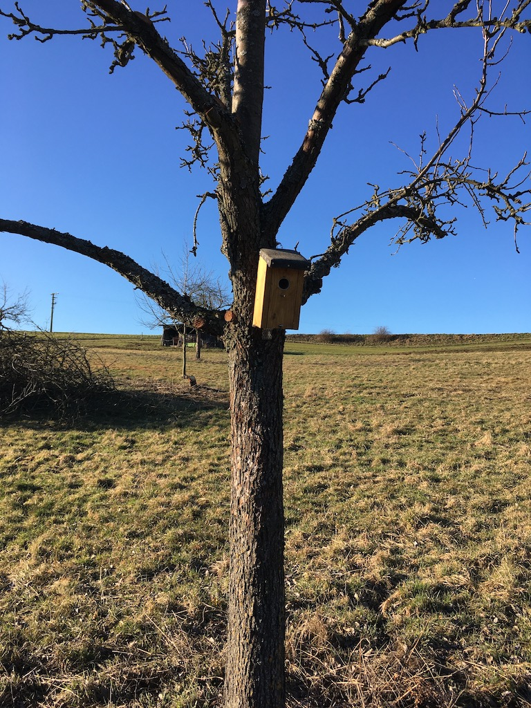 Vogelhäuschen an Obstbäumen